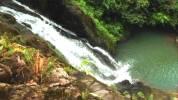 Cascadas del rio cedro
