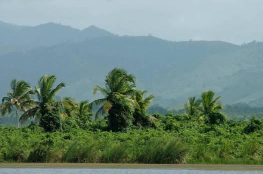 Vista de la cordillera oriental desde la Laguna Limon
