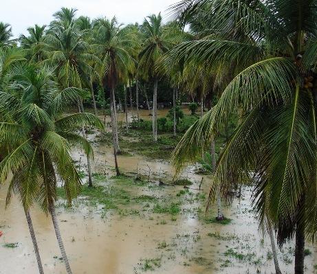 inundaciones-por-el-rio-cedro.jpg