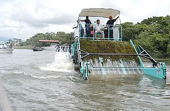En pleno funcionamiento, la máquina extractora de la hydrilla verticillata, adquirida para extraer esa planta del lago de Izabal y la cuenca de Río Dulce.