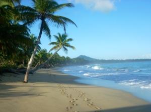 Playa Limón en las afueras de Miches es una de las playas más bellas de la República Dominicana y de todo el Caribe.