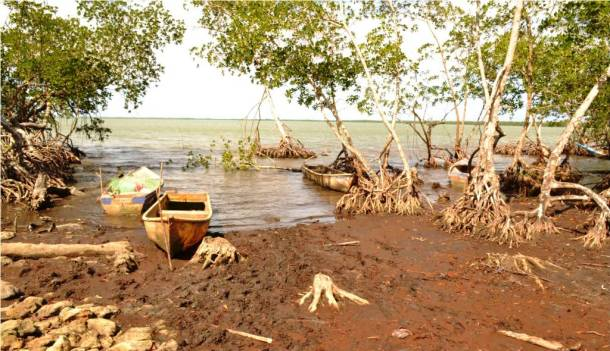 Es perceptibles el daño ecológico en la bahía.